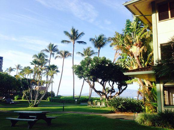 Aloha kakahiaka!!