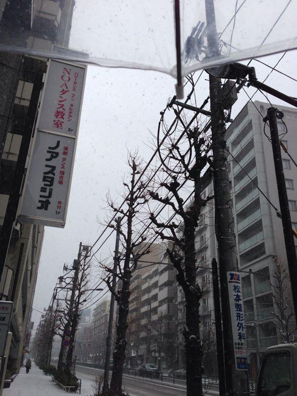 吹雪いとるやんけっ!